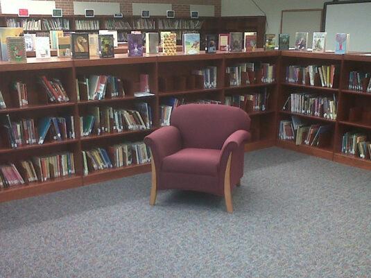 CommCab Library Casework Dover Elementary School